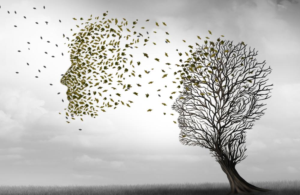 Compreender Melhor a Doença de Alzheimer